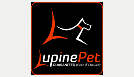 Lupine Pet Collars, Leashes, and Harnesses