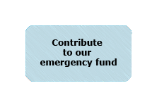 Contribute one time to our medical emergencies fund